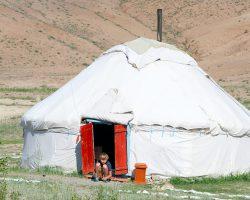 Алтайская-юрта