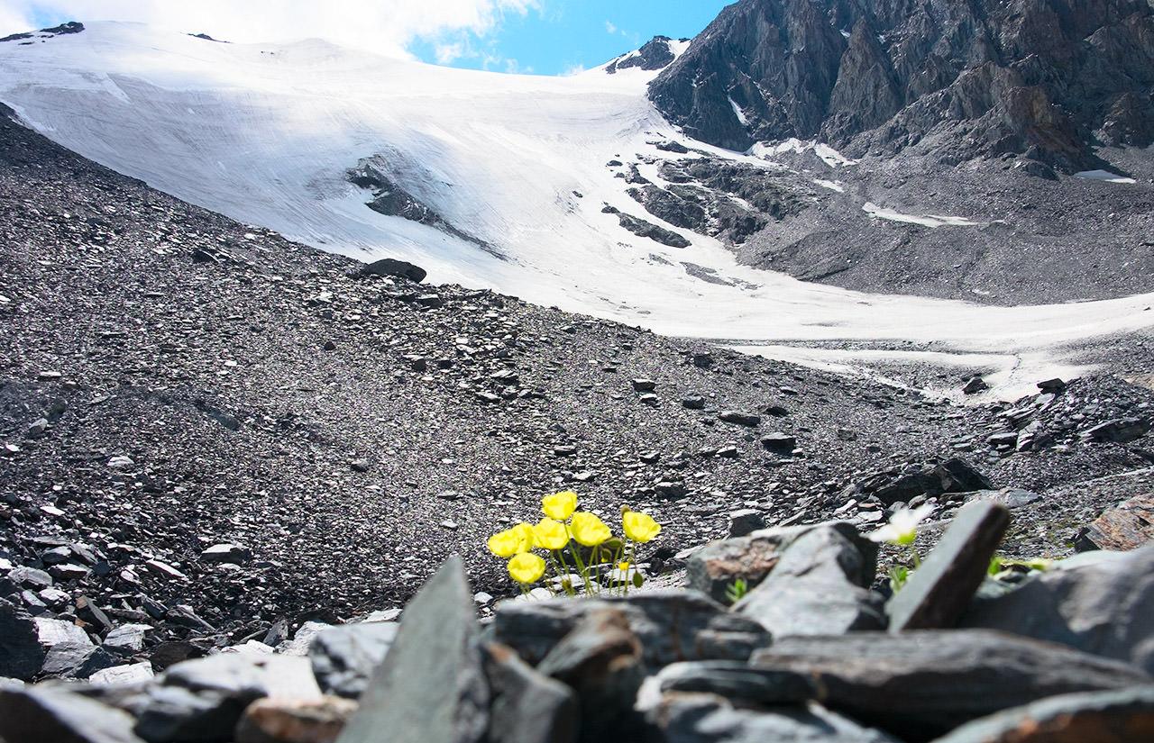 Висячий ледник номер 33