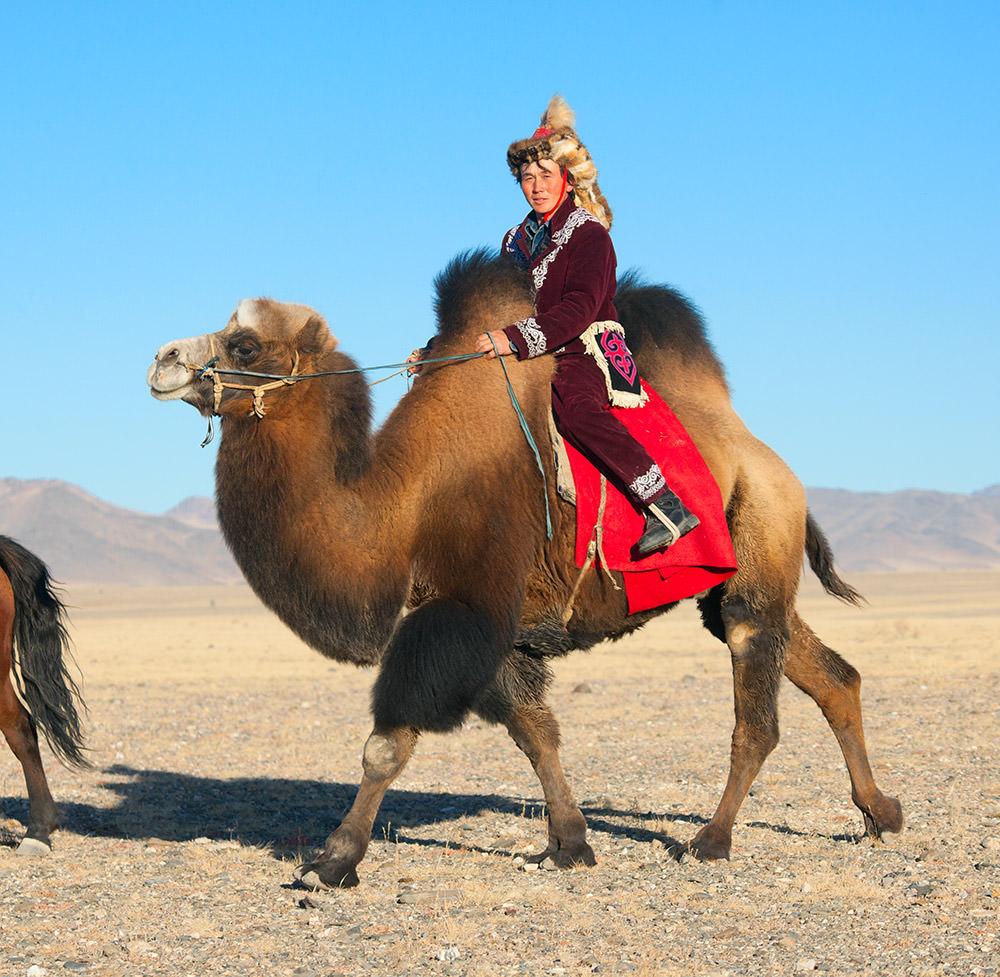 наездник-верблюда