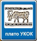 плото-Укок