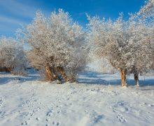 Зимний Туярык