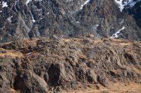 Бараньи лбы в долине Чаган