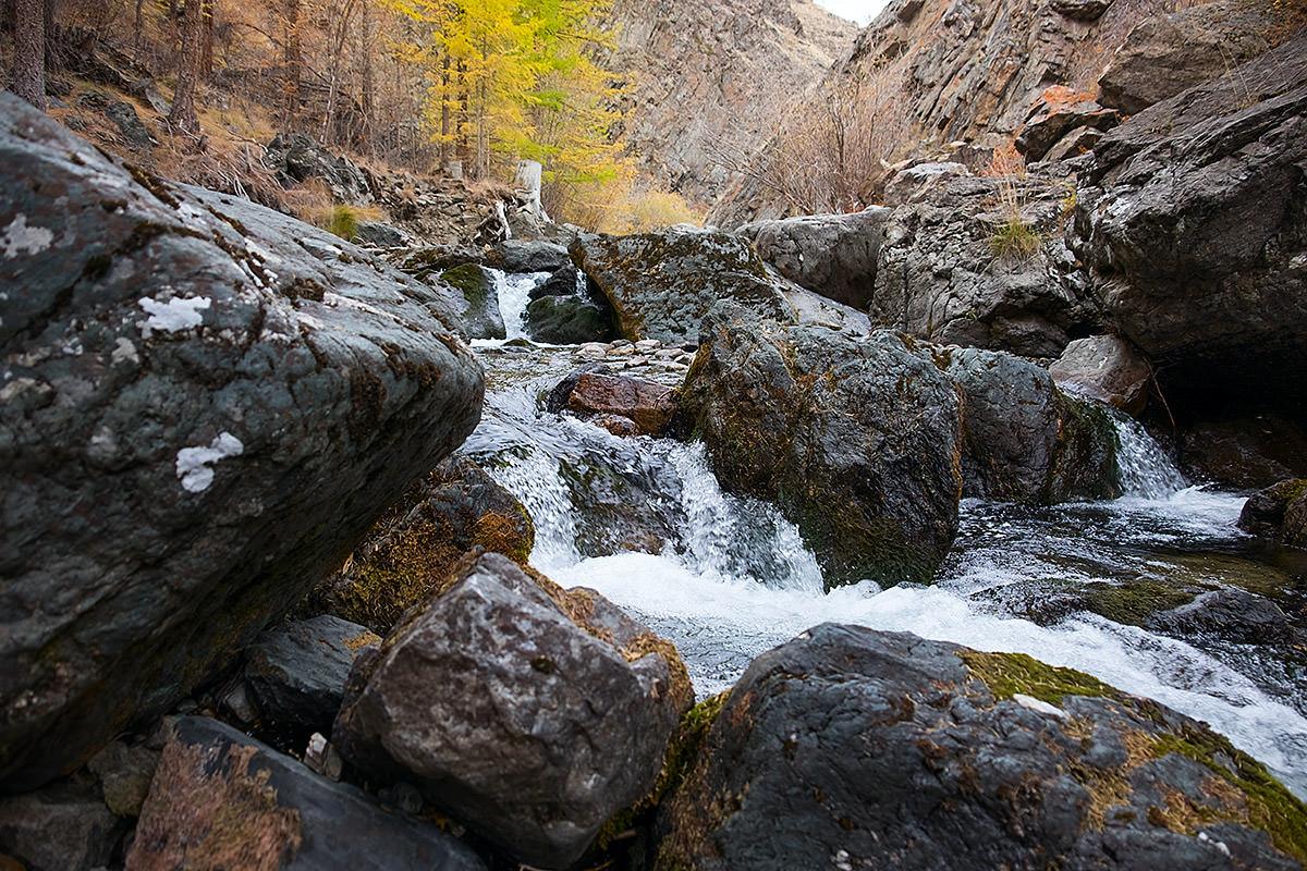 река кокоря осенью