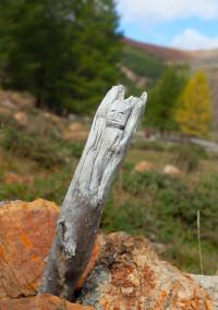 алтайский идол