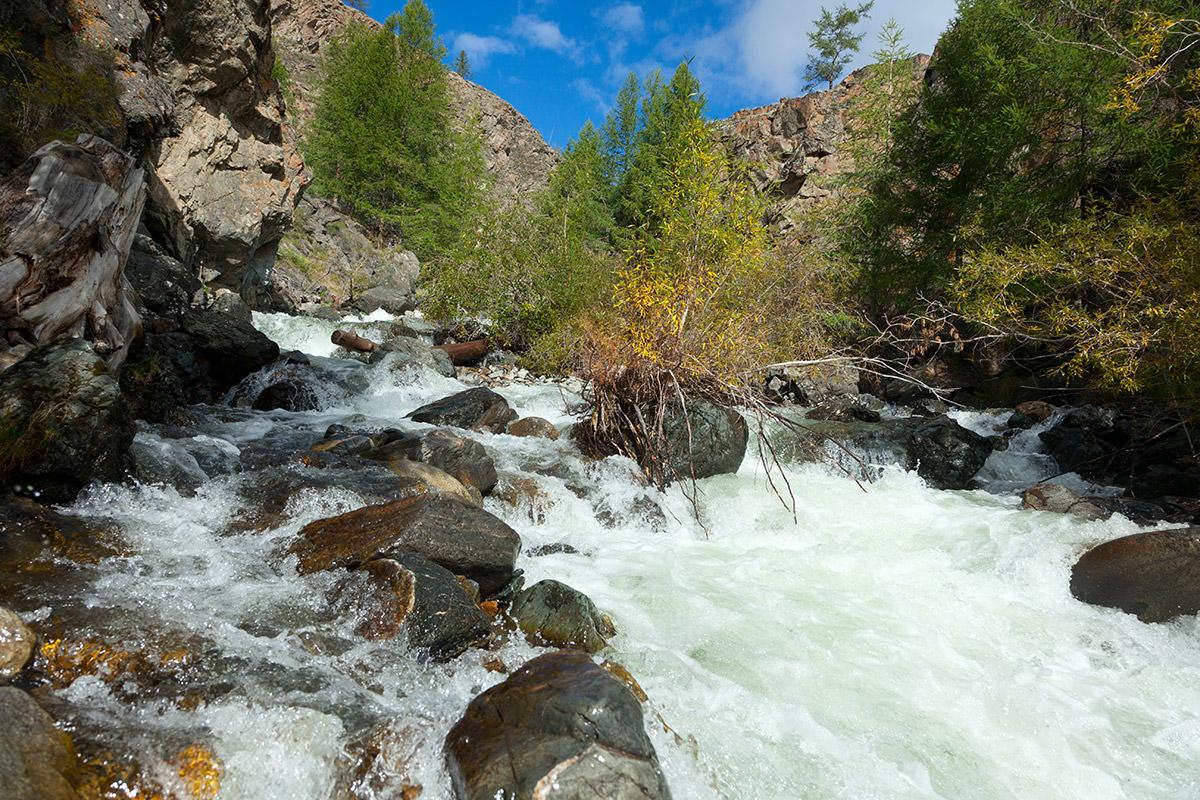 река кокоря