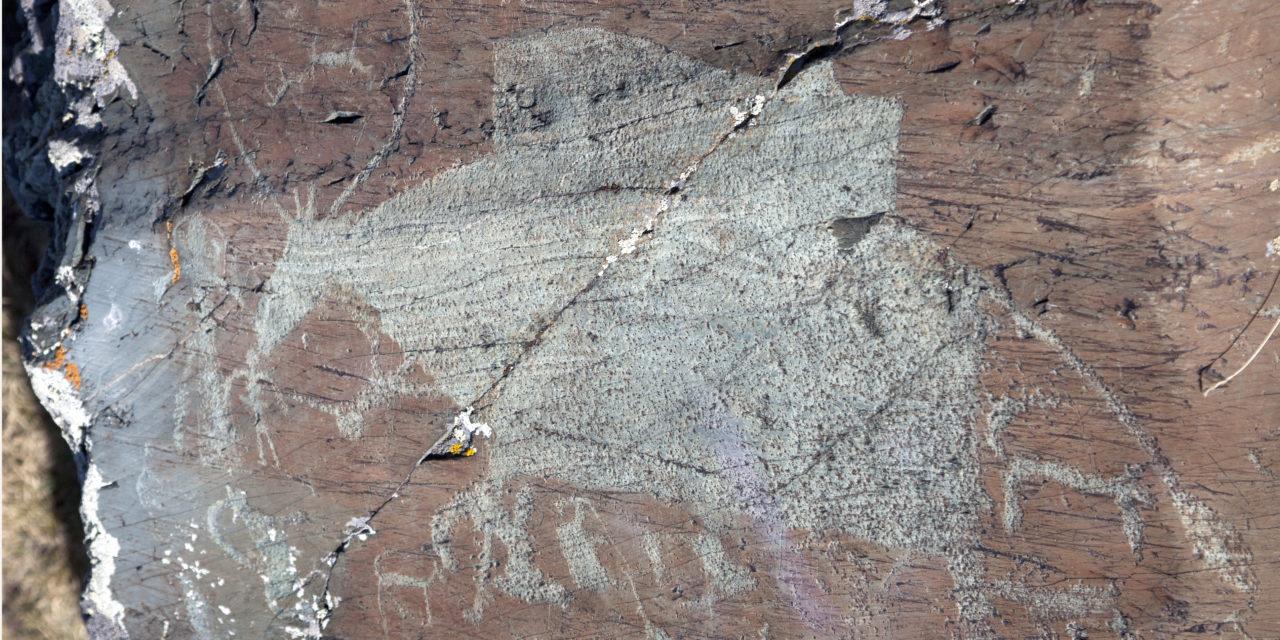 Доисторическая корова в Елангаш
