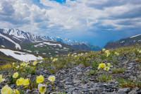 гора Сукор